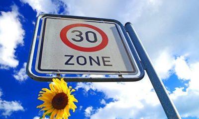 zone-30km-verkeersbord-zonnebloem