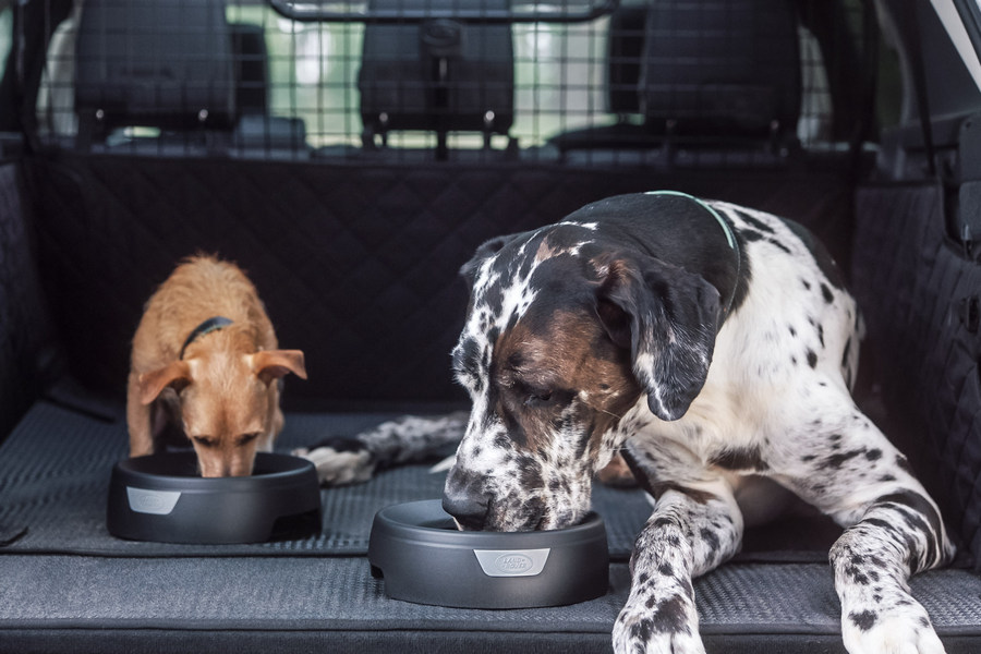 land-rover-honden-discovery