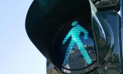 stoplicht-voetgangers-nederland