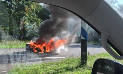 458-ferrari-brand-omstander-2019
